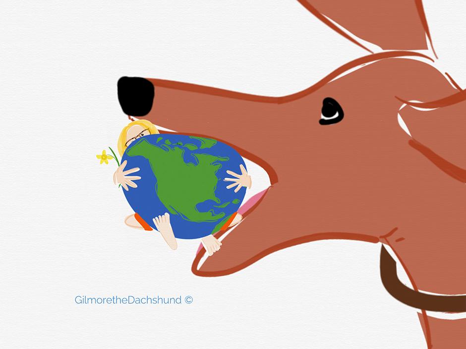 custom dachshund drawings