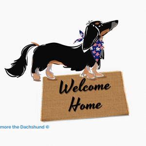 Trixie the Dachshund for a broker at Fathom Realty