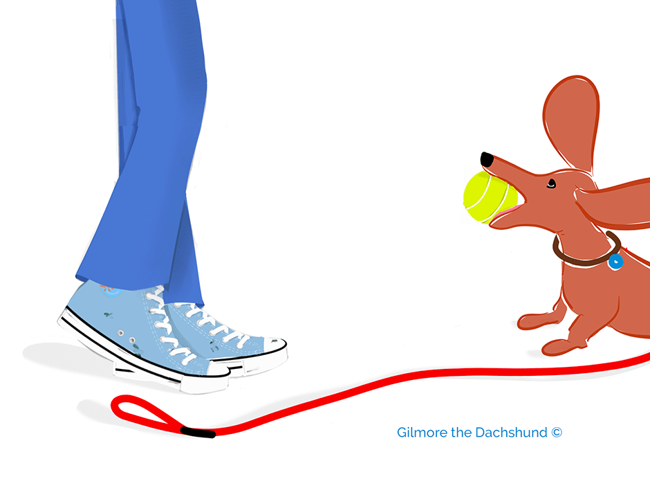 Dachshund drawing of dad and gilmore with a new tennis ball