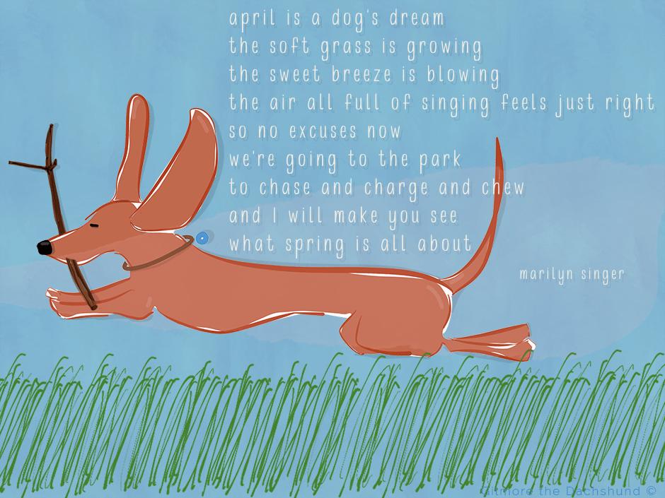 marilyn singer poem april is a dogs dream