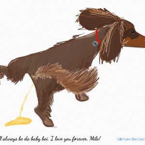 This drawing of Sweet Milo is a custom memorial portrait bone china mug for a young woman that wanted her much loved young dachshund remembered for the naughty things he did.