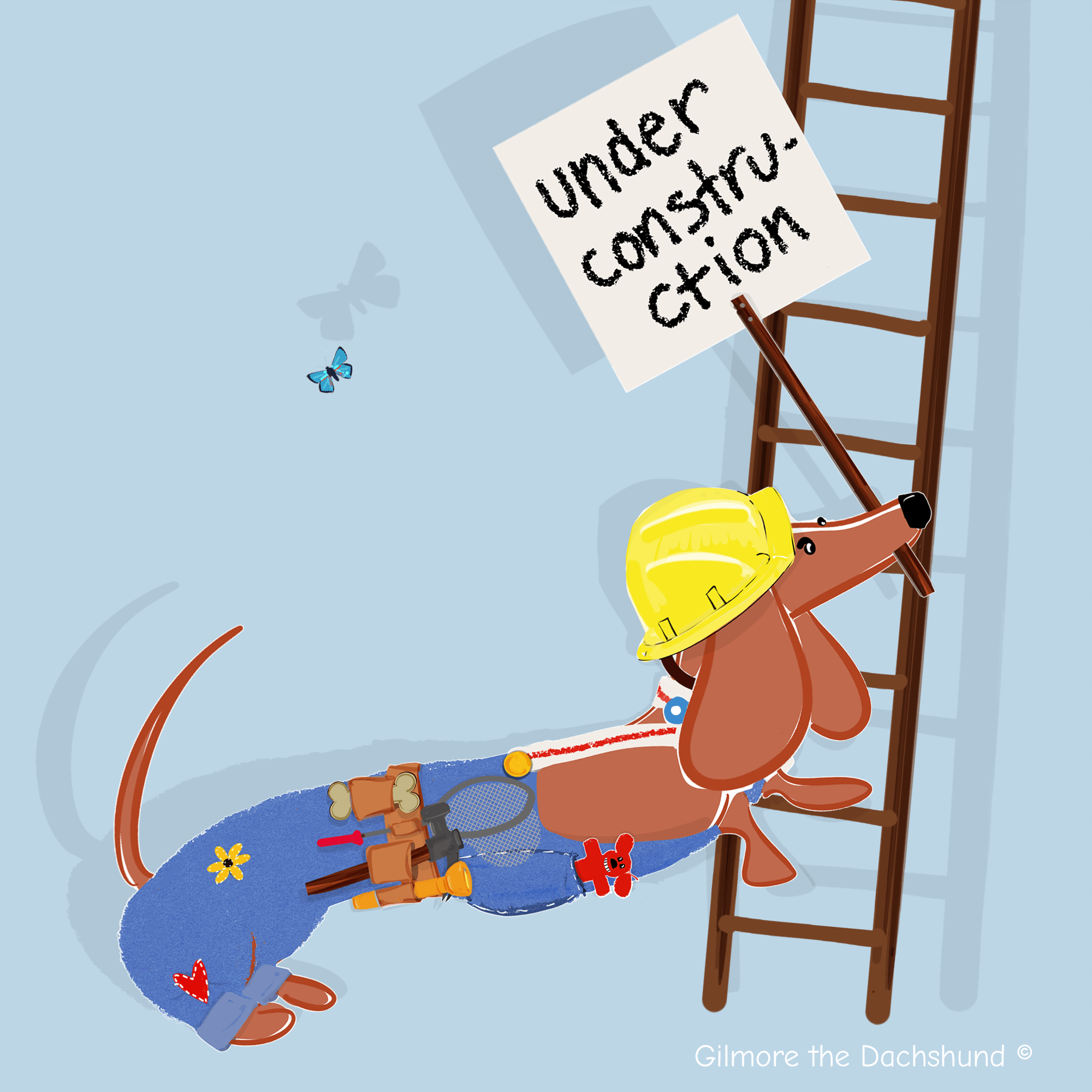 Gilmore the Dachshund © we are under construction
